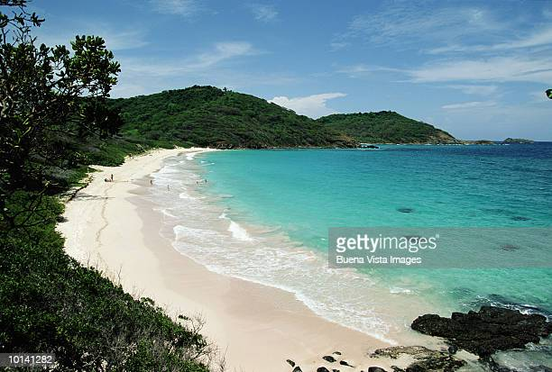 macaroni beach, mustique, grenadines, caribbean - saint vincent and the grenadines stock pictures, royalty-free photos & images