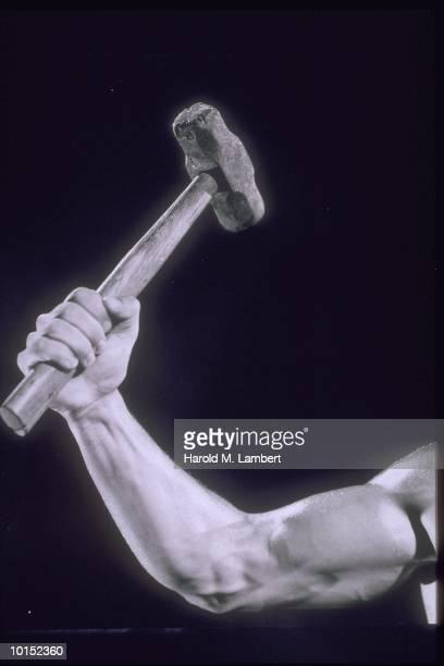 MUSCLED ARM RAISES SLEDGEHAMMER IN AIR