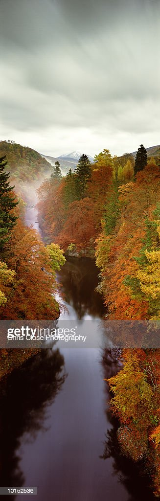 AUTUMNAL TREES, KILLIECRANKIE, SCOTLAND : Stockfoto