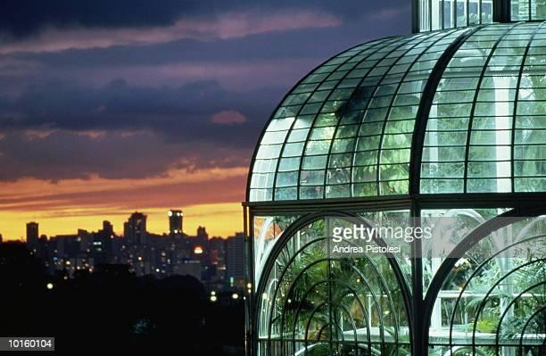 botanical garden, curitiba, brazil - curitiba stock pictures, royalty-free photos & images