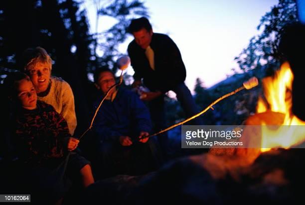 roasting marshmallows by the campfire - kind im grundschulalter stock-fotos und bilder