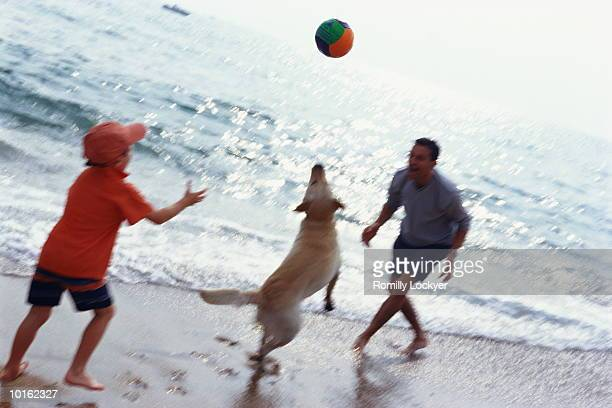 FATHER AND SON ON BEACH PLAYING WITH BALL