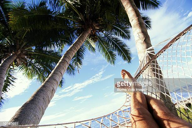 feet in hammock, seychelles - human foot stock pictures, royalty-free photos & images