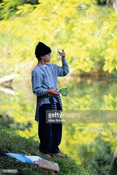 BOY COLLECTING WATER BUGS BY POND, VERMONT