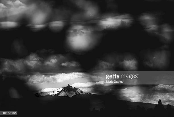 DISTANT MOUNTAIN THROUGH JUNIPERS, HARNEY COUNTY, OREGON, USA