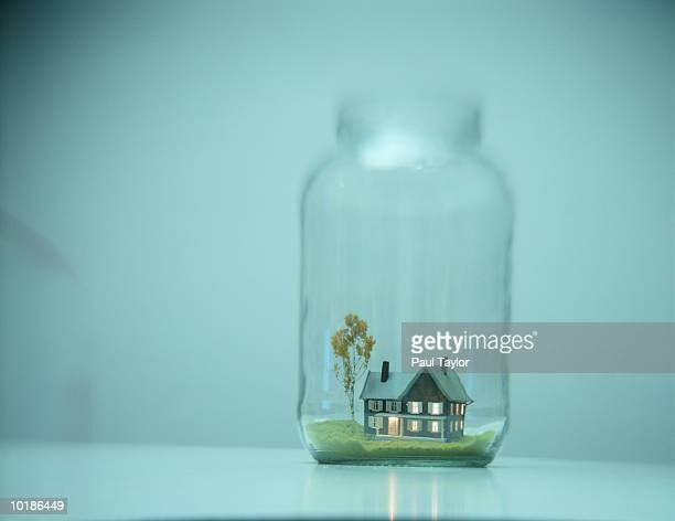 TOY HOUSE IN GLASS JAR