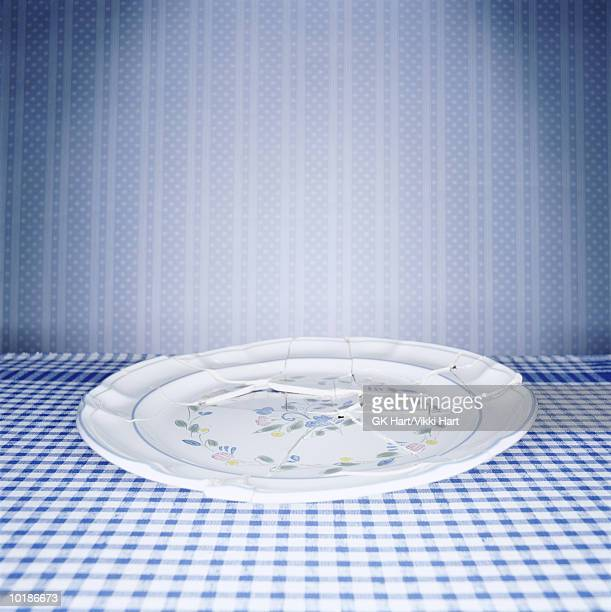 BROKEN PLATE ON TABLE