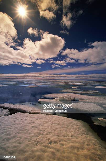CANADA, NUNAVUT SEA ICE IN SPRING