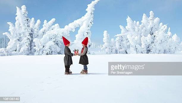 ELVES EXCHANGING CHRISTMAS GIFT IN WINTER FOREST