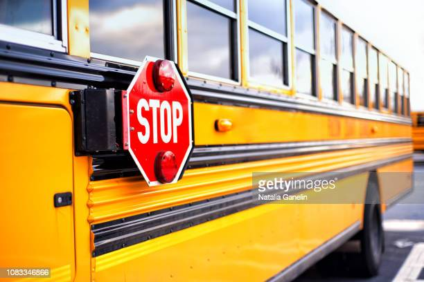 stop - school bus stock pictures, royalty-free photos & images