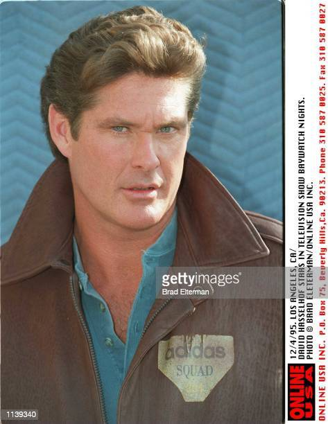 DAVID HASSELHOF IN BAYWATCH NIGHTS