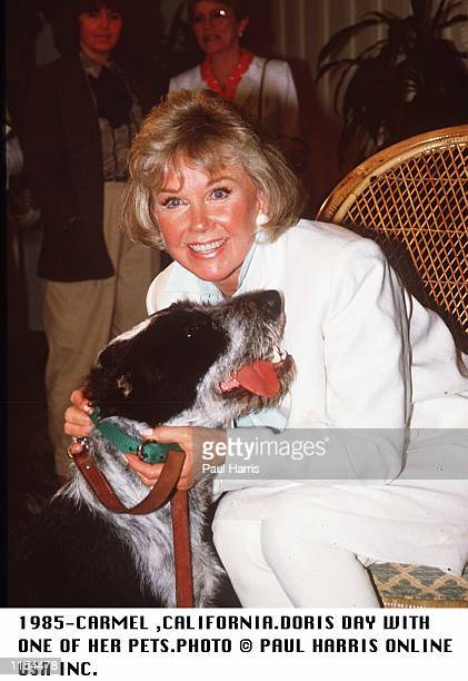 1985CARMELCALIFORNIADORIS DAY WITH ONE OF HER DOGS