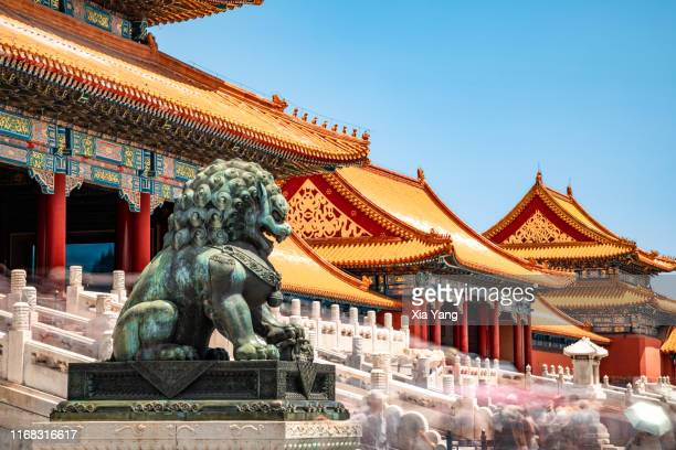 中國北京故宮建筑前的石獅子 - beijing stock pictures, royalty-free photos & images