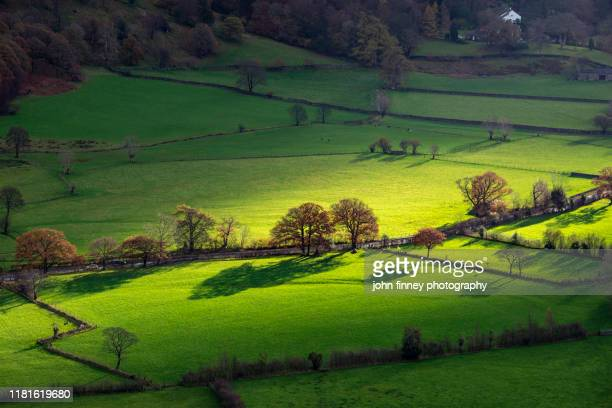 lake district - rosthwaite - barrowdale - keswick - shafts of light - cumbria - uk - whitehaven cumbria stock pictures, royalty-free photos & images