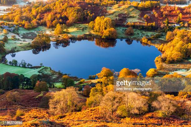 lake district - autumn - rustic - sunrise - orange - october - england - cumbria stock pictures, royalty-free photos & images