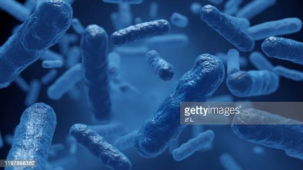 細菌 微生物 細胞 - magnification stock pictures, royalty-free photos & images