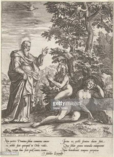 The Creation of Eve Anonymous Cornelis Cort Johannes Sadeler II after 1572 before 1600