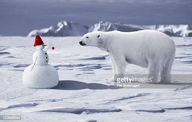 A SNOWMAN MEETS A POLAR BEAR AT THE NORTH POLE