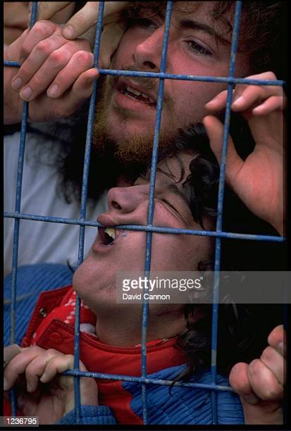 TWO LIVERPOOL FANS ARE TRAPPED AGAINST A FENCE AT THE FRONT OF THE TERRACES AT HILLSBOROUGH 95 LIVERPOOL SUPPOTERS WERE KILLED IN THE DISASTER CAUSED...