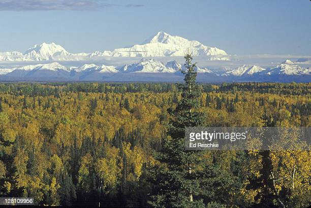mount mc kinley viewed from talkeetna. alaska. 20,320 feet - アラスカ文化 ストックフォトと画像