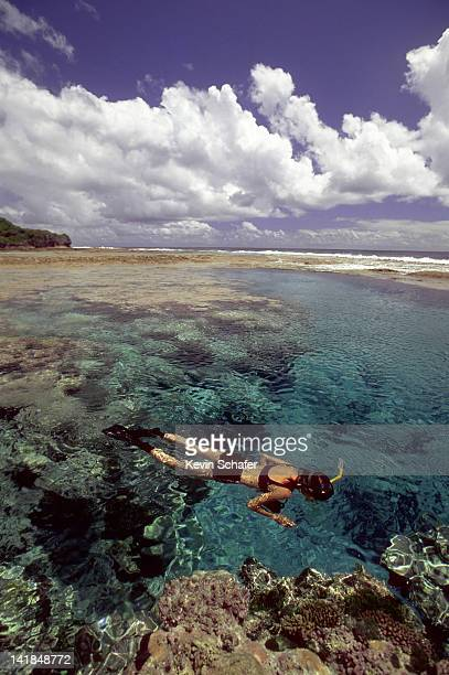 niue island. south pacific. woman snorkelling at hikutavake pools. largest raised coral atoll on earth - niue island stock photos and pictures