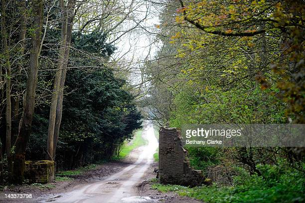 A distinctive wall that Hockney painted throughout the seasons April 25 2012 in the Yorkshire Wolds United Kingdom David Hockney painted landscapes...