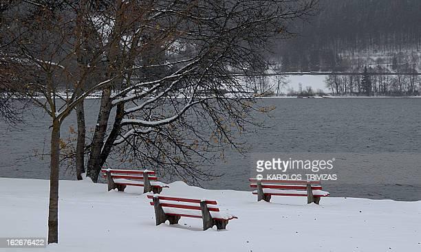 FROZEN LONELINESS (GERMANY, TITISEE, NEUSTADT)
