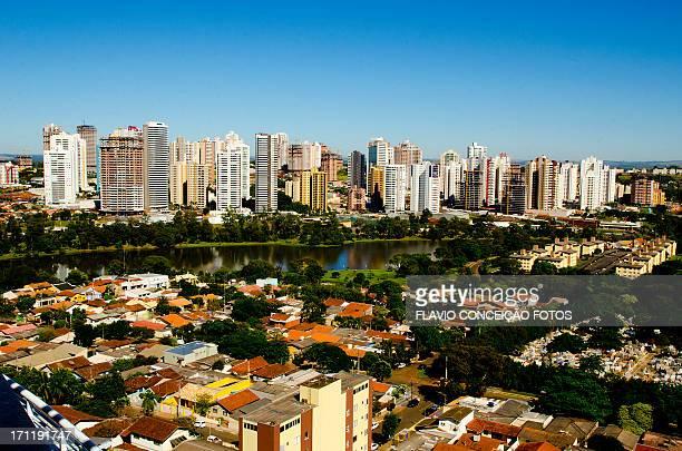 londrina gleba palhano - londrina stock pictures, royalty-free photos & images