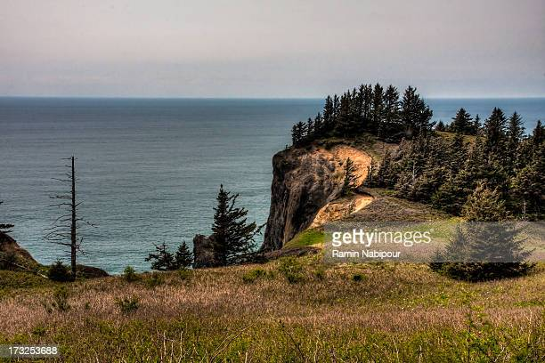 hwy 101, or - manzanita stock pictures, royalty-free photos & images