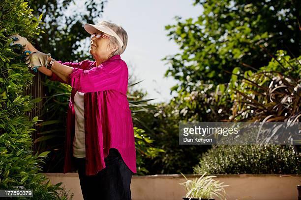 ELDERLY WOMAN GARDENING,READING,SEWING ETC