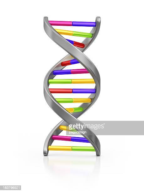 dna - clip art stock pictures, royalty-free photos & images