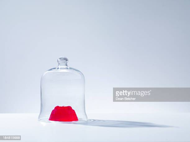 JELLY AND BELL JAR
