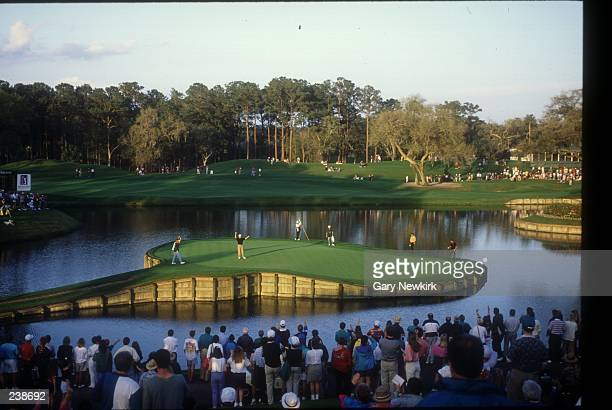 DAVIS LOVE III PUTTING ON THE FAMED 17TH HOLE ISLAND GREEN AT TPC SAWGRASS DURING THE PLAYERS CHAMPIONSHIP PONTE VEDRA FL