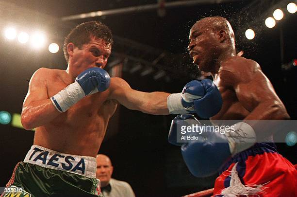 DEFENDING CHAMPION JULIO CESAR CHAVEZ LANDS A HARD LEFT TO THE CHIN OF CHALLENGER MELDRICK TAYLOR TONIGHT DURING THE SEVENTH ROUND OF THEIR WBC SUPER...