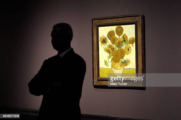 A gallery assistant stands beside two of Van Gogh's 'Sunflowers' which are on display in a new exhibition at the National Gallery on January 24 2014...