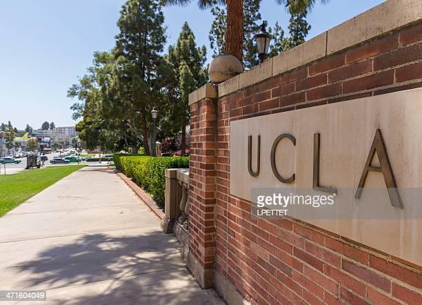 ucla - universidade da califórnia los angeles imagens e fotografias de stock