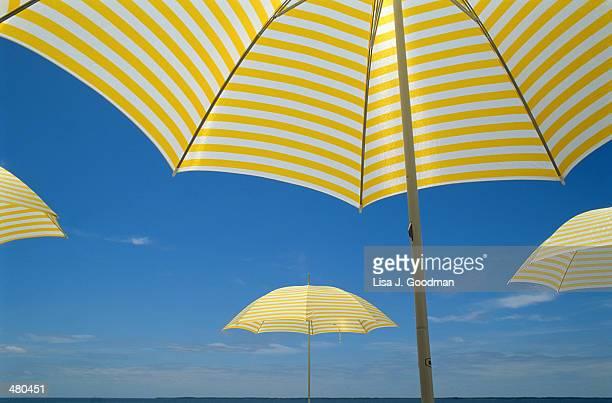 YELLOW AND WHITE BEACH UMBRELLAS