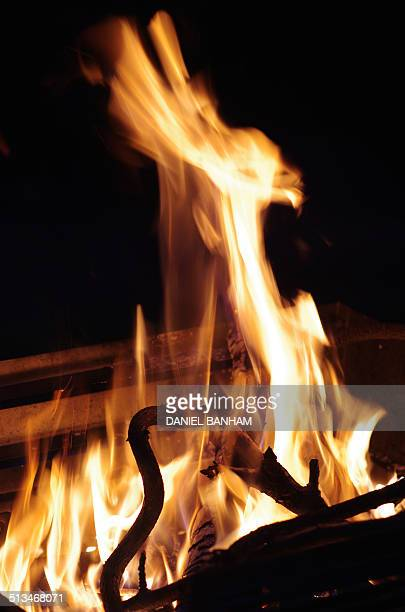 phoenix from the flames - phoenix bird stock pictures, royalty-free photos & images