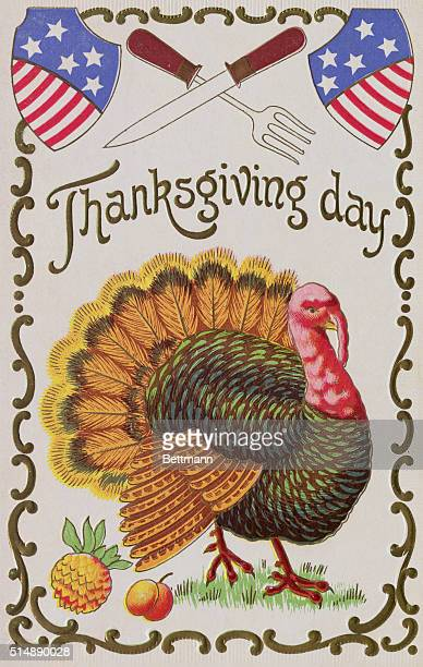 THANKSGIVING DAY GREETING CARD PAINTING OF A COLORFUL TURKEY UNDATED COLOR SLIDE