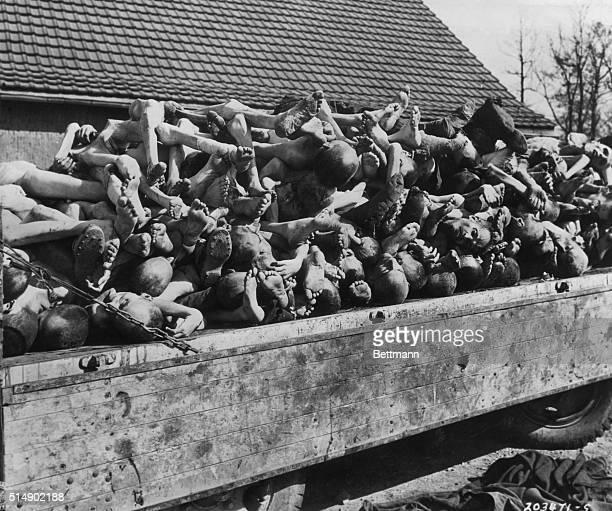 UNBURIED NAZI CONCENTRATION CAMP VICTIMS DISCOVERED BY LIBERATING AMERICAN ARMY NEAR CAMP BUCHENWALD PHOTOGRAPH 1945