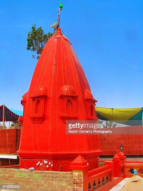 shivratri celebration - etnia indo asiatica foto e immagini stock