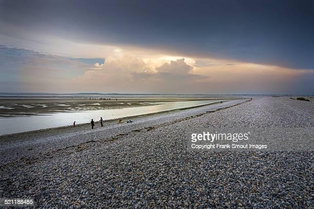 baie de la somme - le hourdel - ソム ストックフォトと画像