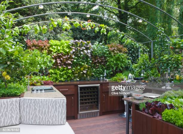OUTDOOR KITCHEN/ENTERTAINING AREA WITH EDIBLE LIVING WALL