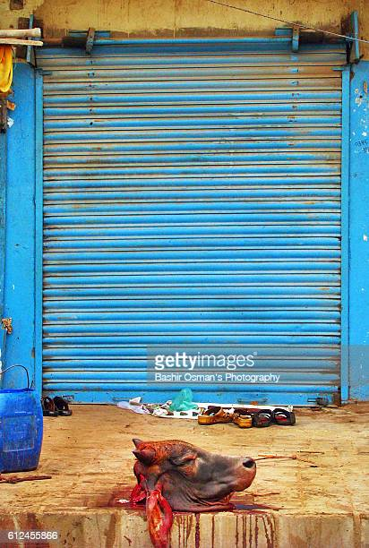 streets of karachi - eid al adha stock pictures, royalty-free photos & images
