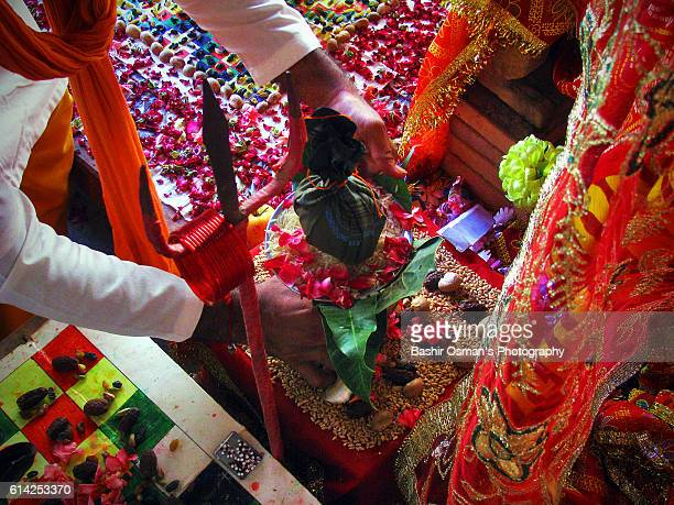 dussehra / navratri festival 2016 - saint sacrement photos et images de collection