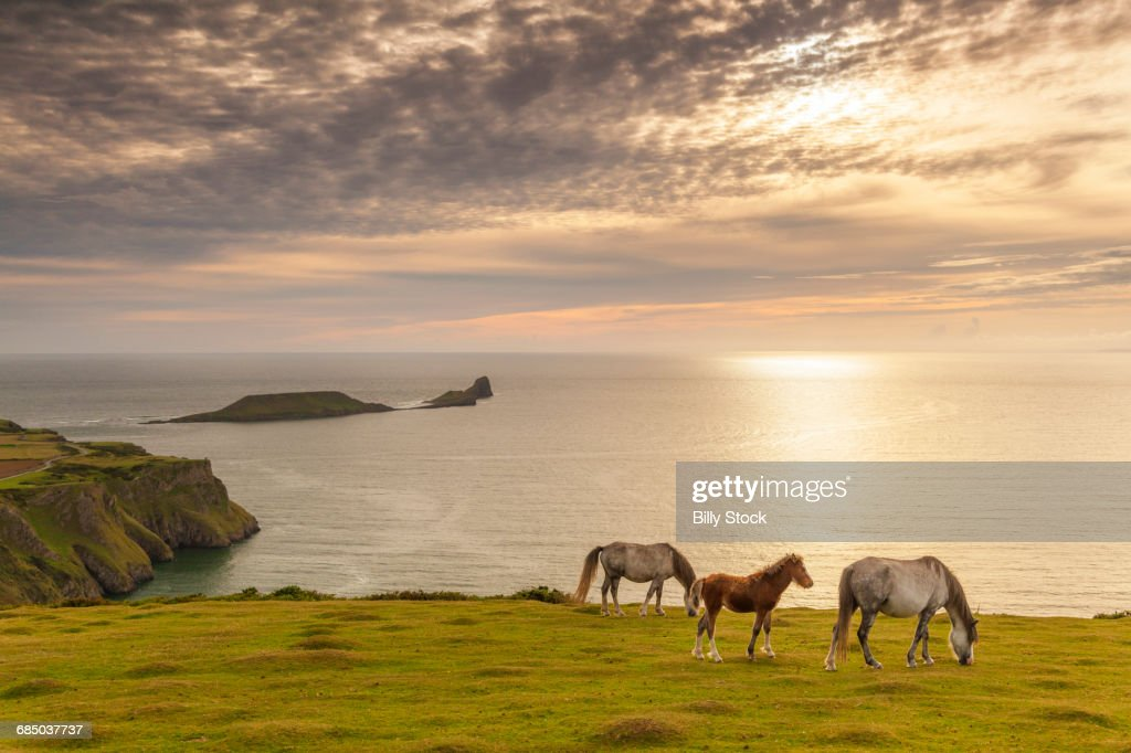 RHOSSILI BAY, GOWER, WALES, U.K. : Stock Photo