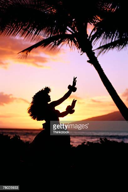 thc0021603 - hula dancer stock pictures, royalty-free photos & images