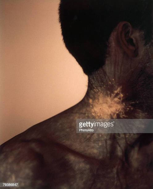 paa100000071 - blood vessel stock photos and pictures