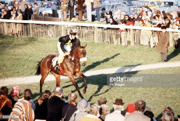 FAVOURITE 'LONG WHARF' CANTERS TO THE START OF THE MADHATTERS PRIVATE SWEEPSTAKES AT PLUMPTON WHEN HE COMPETED IN HIS FIRST HORSE RACE UNDER JOCKEY...