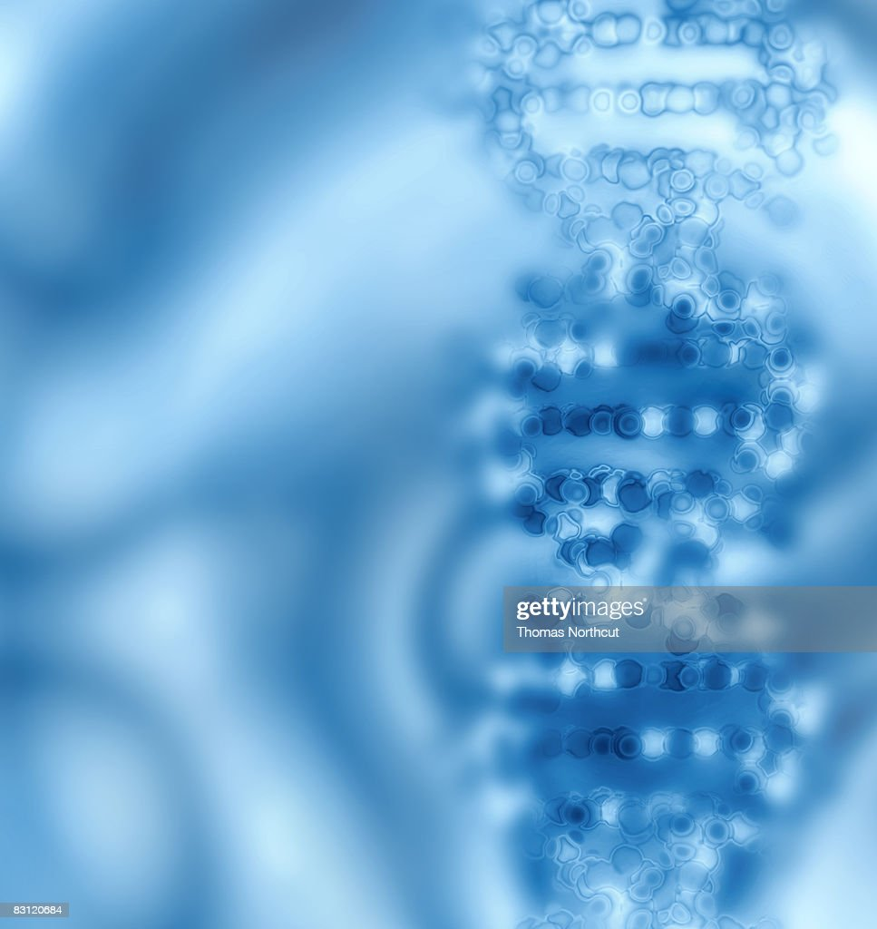 DNA : Stock Photo